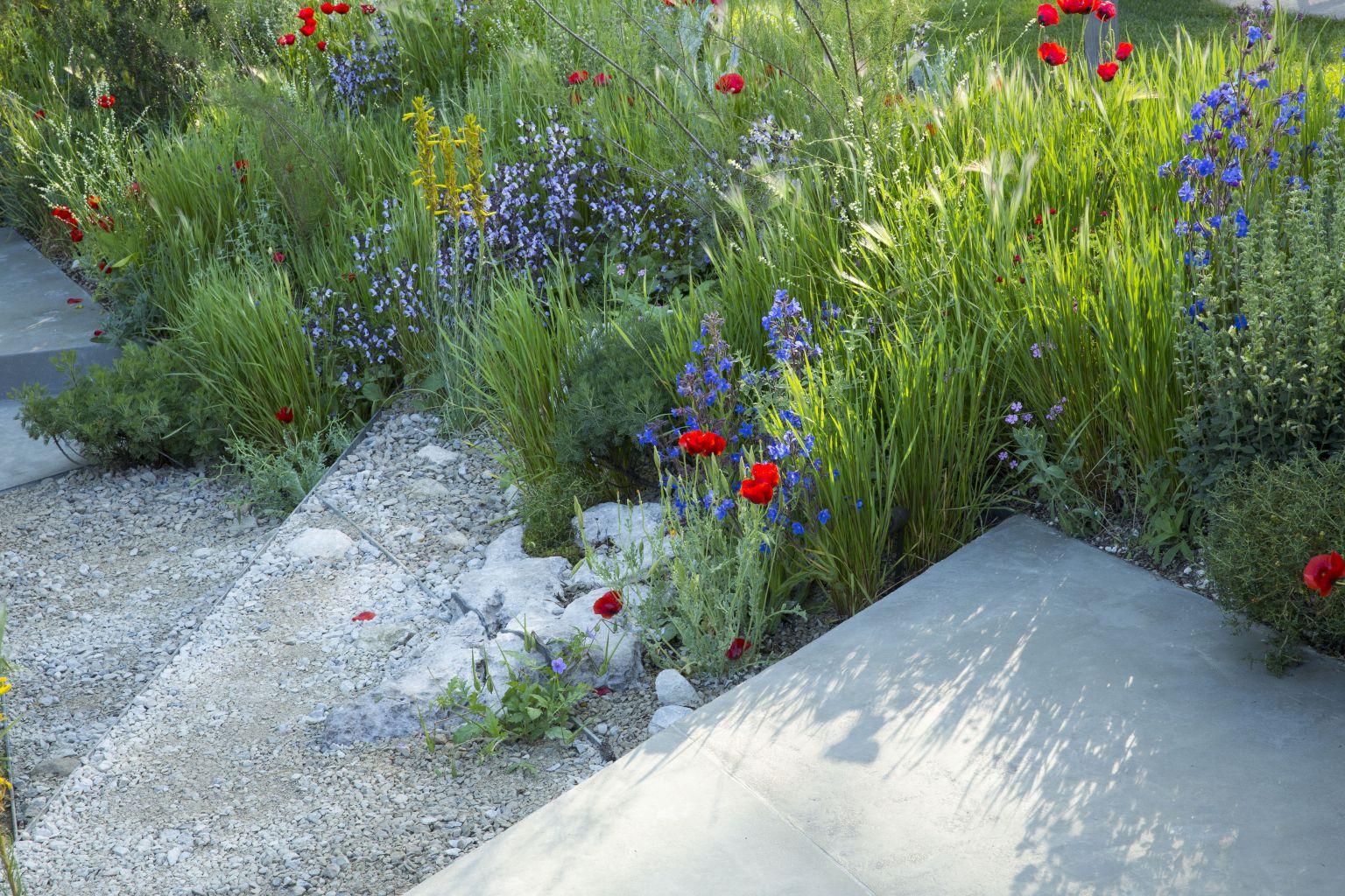 Hugo Bugg Chelsea Flower Show 2016 5