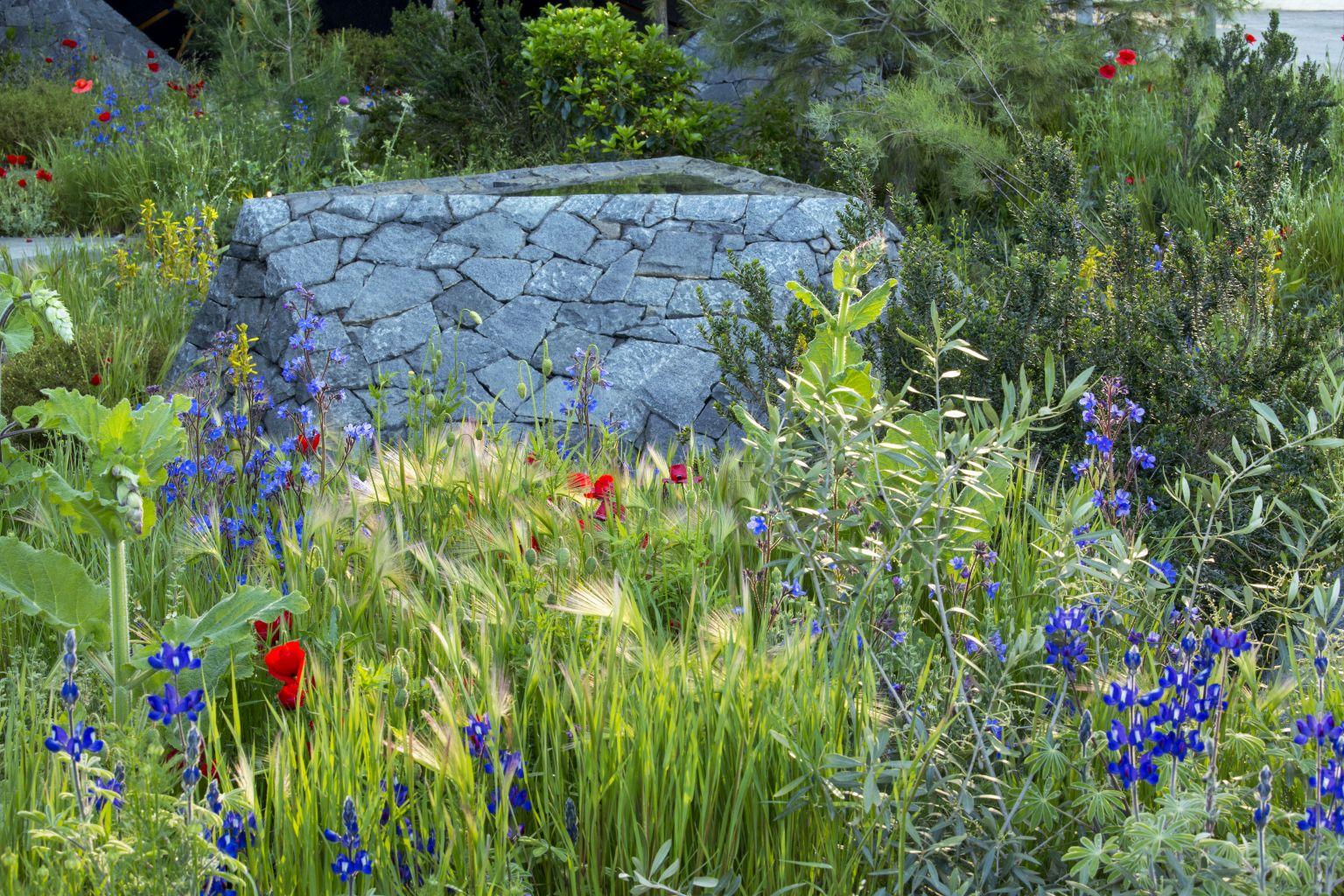 Chelsea Flower Show 2016 Hugo Bugg Landscapes
