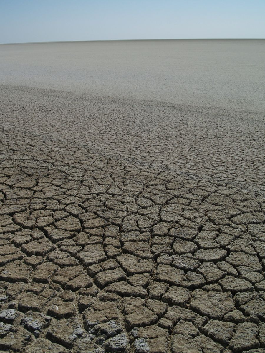 Cracked earth salt pan