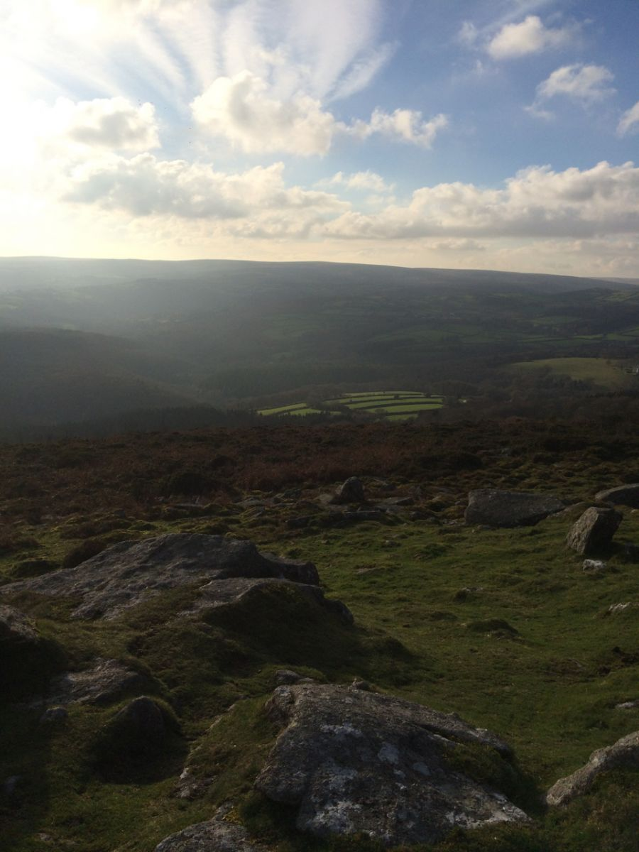 Dartmoor View