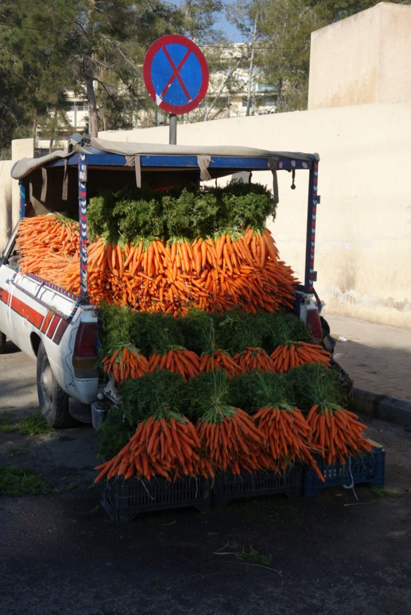 Carrot Wagon