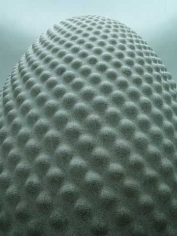 Seed by Peter Randall Page